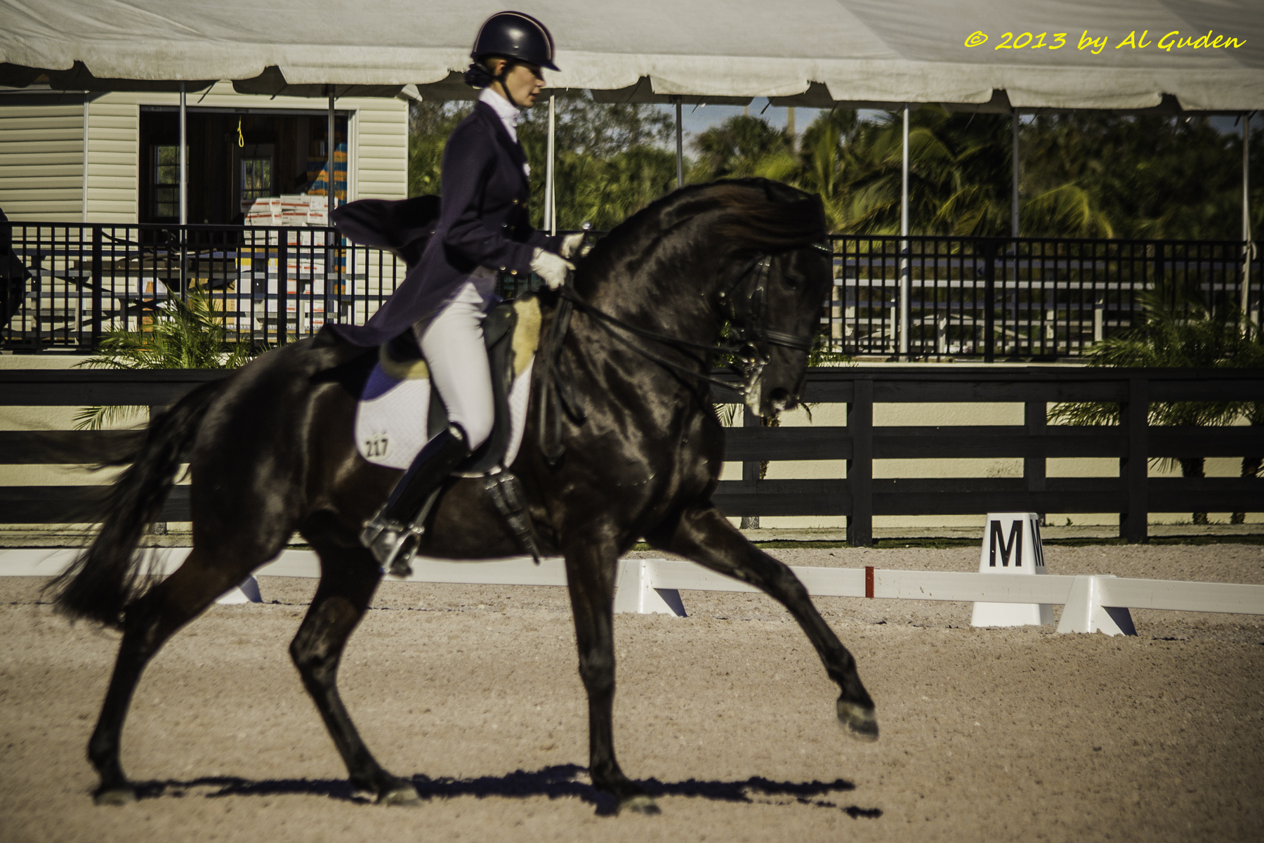 : Caroline Roffman and Uruguai do Arete rode the FEI Prix St. Georges during the Florida Dressage Classic CDI-W. (Photo courtesy of Al Guden)