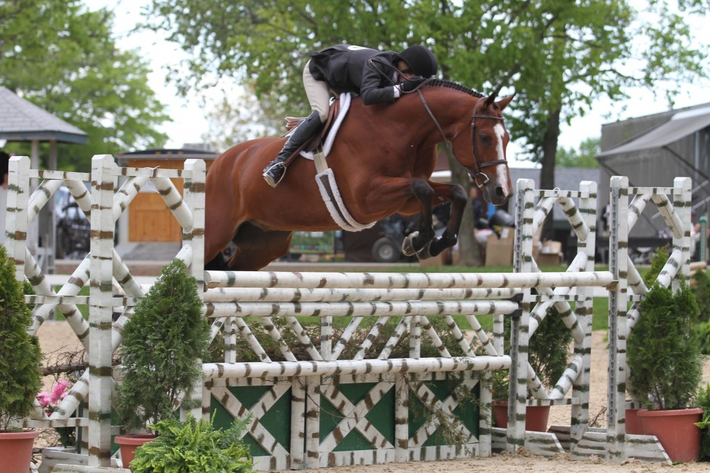 Kelley Farmer and Taken jumping to back-to-back blue ribbons in today's High Performance Hunter division of the Kentucky Spring Horse Show. Photo By: Emily Riden