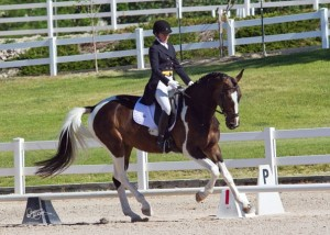 Sydney Conley Elliott and SaffariO are in second place in the CCI* after the dressage phase at the Colorado Horse Park.