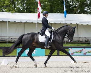 """David Marcus and Chrevi's Capital won the Grand Prix and the Grand Prix Freestyle at the CDI3* Angelstone International Dressage Tournament held June 14 through 16 in Rockwood, ON."" Photo Credit – Mary White, Lone Oak Equine Photography"