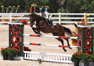 Janine Weatherby and her long-time partner Panache easily to win the 1.40m Open Jumpers