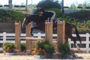 "Liza Dennehy and Now You Know, 3'3"" Amateur Owner Hunter Champions"