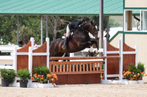 "Audrey Buck and Edwina, 3'6"" Performance Working Hunter Champions"