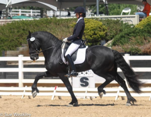 Margo Gogan and Yps in the Rising Star Second Level Test 2