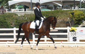 Allen Swafford and Fiderstep HW in the Rising Star First Level Test 2