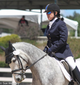 Jane Renner and Wildwych Peccadillo in the Rising Star First Level Test 2