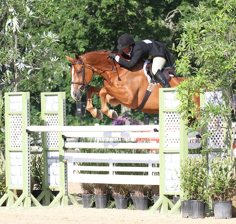 Jennifer Alfano and Jersey Boy won the International Hunter Derby for the fifth time in six years. Photo by Anne Gittins Photography.