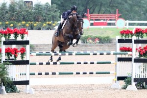 Laura Linback rode to the top of the Open Jumper leader board for the opening day of Equifest II, taking the 1.40m Open Jumper victory with Whittaker MVNZ.