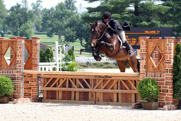 ennifer Alfano and Candid secured the Pre-Green Hunter Championship during HITS-on-the-Hudson.They are preparing for the Pre-Green Incentive Finals approaching in just a week. Photo By: Anne Gittins.