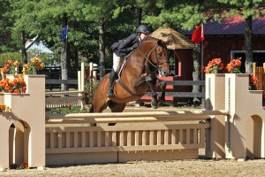 Kelly Lively and Tarzan Win $1,000 WIHS/NAL Adult Hunter Classic