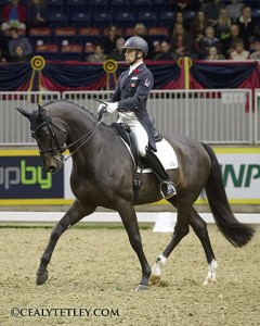 David Marcus of Campbellville, ON and his 2012 London Olympics mount Chrevi's Capital won the Grand Prix phase of the $20,000 Royal Invitational Dressage Cup on Nov. 6 at the Royal Horse Show in Toronto, ON.   Photo Credit - Cealy Tetley