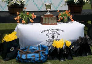 The coveted Polo Gear Challenge Cup on the Grand Champions Polo Club trophy table surrounded by Polo Gear swag. Photo by Scott Fisher