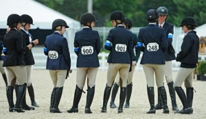 2014 Devon Best Performers Photo by Brenda Carpenter courtesy of the Devon Horse Show & Country Fair.