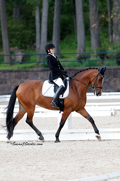 Rebecca Hart and Schroeter's Romani perform their Individual Test at the 2014 USEF Para-Equestrian Dressage National Championship & Selection Trial. Photo by Susan Stickle, SusanJStickle.com