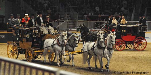 Photo 29 – The Royal Horse Show coaching classes sponsored by Green Meadow are popular with the fans. The antique coaches, such as this black and yellow road coach used in Great Britain, pulled by a team of four horses are a breathtaking sight. Photo by Kim MacMillan/MacMillan Photography