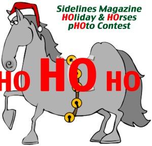 kids horses contest essay