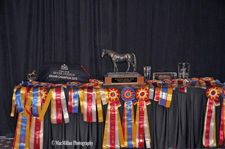 Silver-Stirrup-Awards-were-held-on-Thursday-Night-at-USEF-Convention