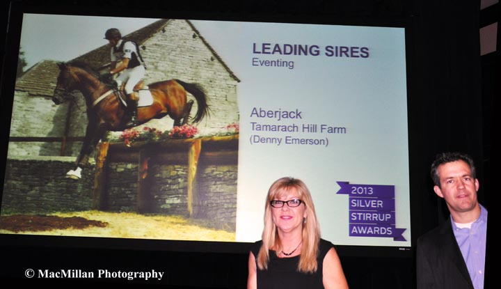 Tamarach-Hill-Farms-Aberjack-was-the-leading-Eventing-Sire-at-the-Silver-Stirrup-Awards