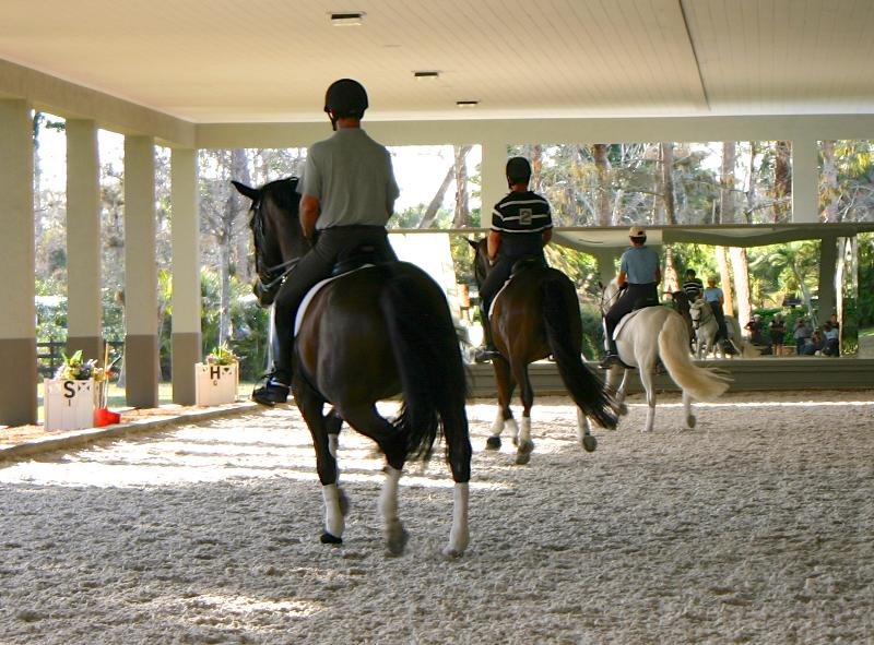 Team Purina USA practices quadrille for  The Challenge of The Americas. All Photos Phelps Media Group