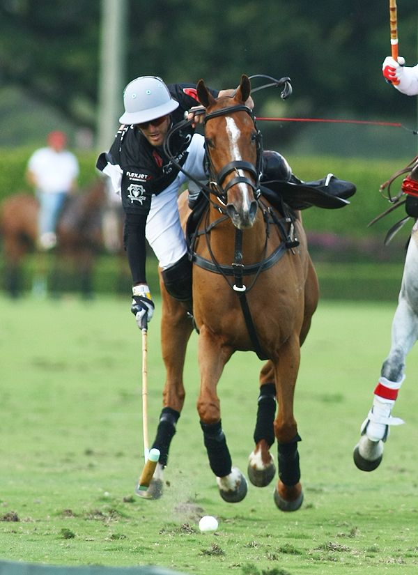 Audi's Nico Pieres out of the saddle to retrieve the ball outracing defenders. Photo credit Alex Pacheco.