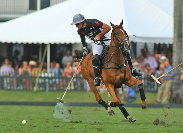 Audi's Nico Pieres goes after the ball before a run downfield. Photo credit Alex Pacheco