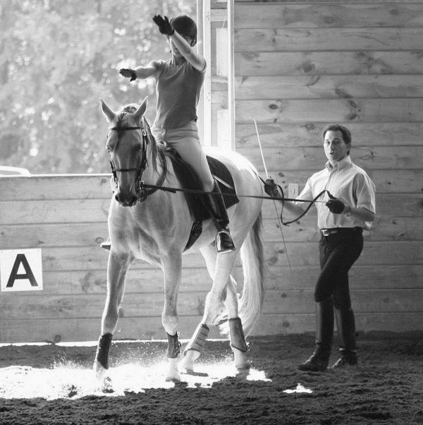 Sons of the Wind Farm Clinics Focus on Classical Dressage at Cornell University and Midwest Horse Fair. Photo Courtesy of the Client.