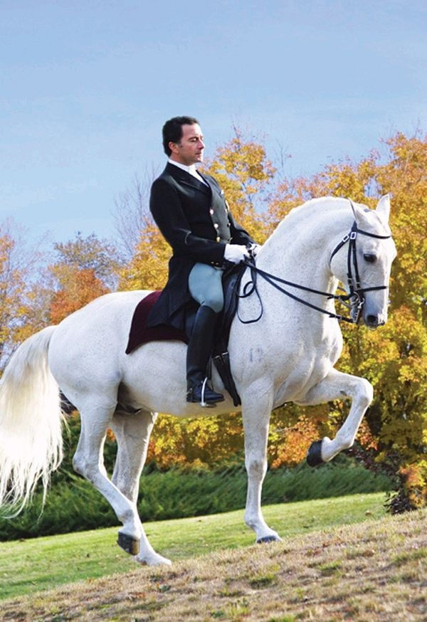 Vitor Silva of Sons of the Wind School of Equestrian Arts