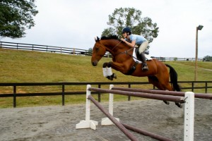 "Kate riding Nyls du Terroir bridle less over a 4'6"" jump."
