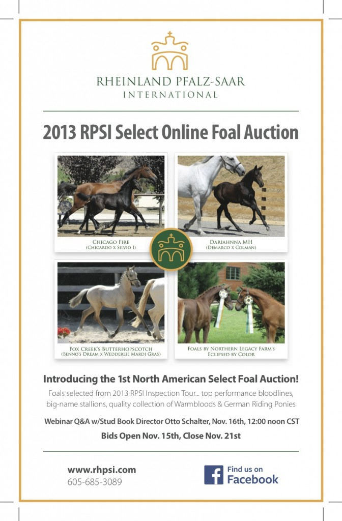 Get ready for the first annual foal auction!