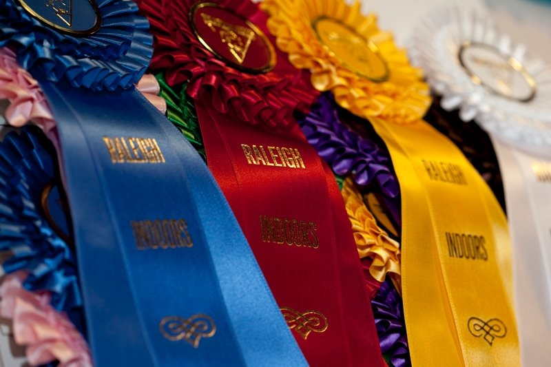 Williamston (NC) United States  city images : What's Happenin' | United States Equestrian Federation