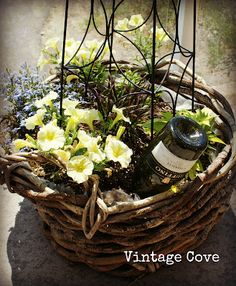 Use leftover wine bottles to water your plants in a low maintenance way! Idea and photo via Vintage Cove Girl.