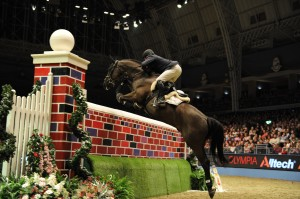 London International horse Show-Olympia 2013