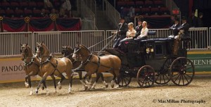 12-The Green Meadows Carriage competition was for antique carriages pulled by four matching horses. The drivers, passengers and grooms were all dressed in formal costume.   The First Place Red ribbon went to Glenmore Farms Entry driven by Glenn A Werry Jr.