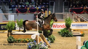 14-A favorite of the audience and the competitors alike, the indoor eventing offered lots of action and thrills. Canadian Olympian Jessica Phoenix rode Charlotte Schickedanz' Trakehner mare Abby GS.