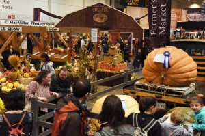 23-Garden and farm produce exhibits added color to the show. It was anyone's guess how many pumpkin pies this large pumpkin would make.