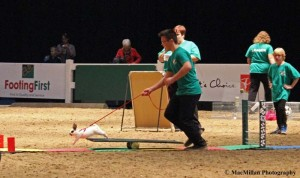24-4-H bunny jumping was a huge hit at the Royal Winter Fair. Featured in the President's Choice Animal Theater, each 4-H member attempted to put their rabbit through a cross between a show jumping course and a dog agility course.