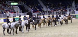 Pinning the Large Pony  Hunter Under Saddle Class during the 2014 Royal Horse Show on the first Friday Photo by Shelley Higgins/MacMillan Photography