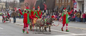 11-The elves, a.k.a. the Leveck family from Jamestown, Ohio, were appropriately clad in red and green. Jane Leveck drove this Amish-made wagon pulled by mini donkeys Lilly and Bailey who were led by Kandy and Renee Leveck.