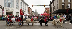 18-The six-Mini Horse hitch was a parade favorite. The adorable team is owned and driven by Judd Porter, St. Louisville, Ohio, with Lebanon Mayor Amy Brewer on the seat next to him and other Lebanon residents riding along in the back of the wagon.