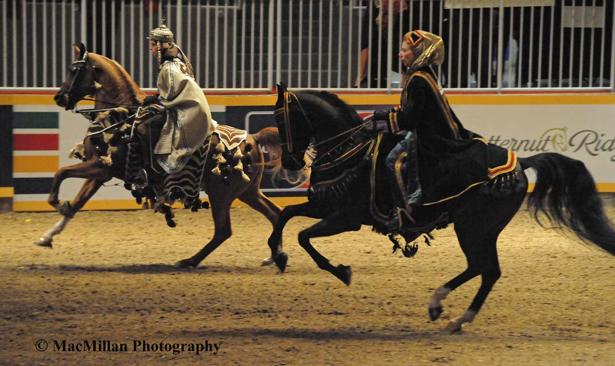 Photo 20 – Racing the wind...Arabians in the native costume class at the 2015 Royal Horse Show. Photo by Kim MacMillan/MacMillan Photography