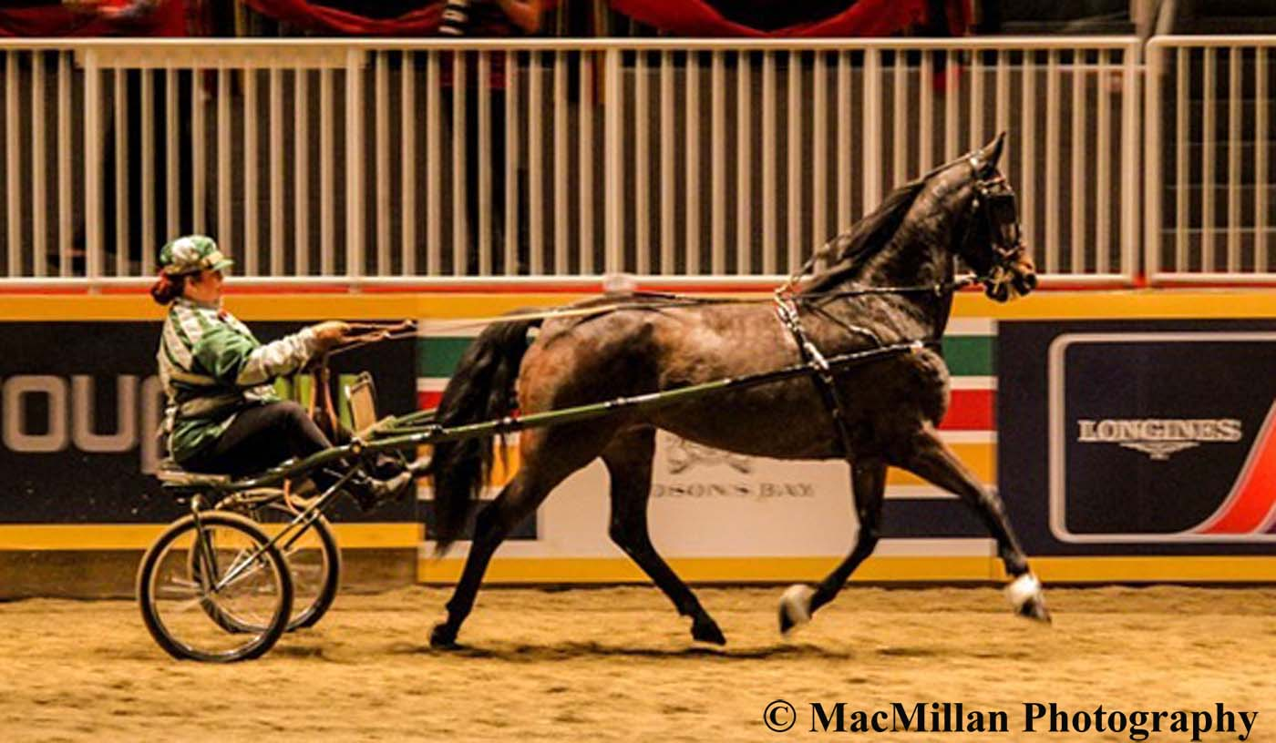 Photo 25 – Winners of the $3000 OHHA Green Roadster Classic to Bike Finals Presented by Little Rascals Daycare was Girl Crush driven and owned by Jim McKague. Photo by Shelley Higgins/MacMillan Photography
