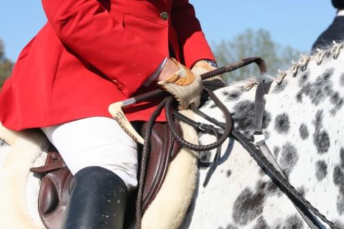 Carla Hawkinson, MFH on her hard to spot mare Photo by Gretchen Pelham, MFH