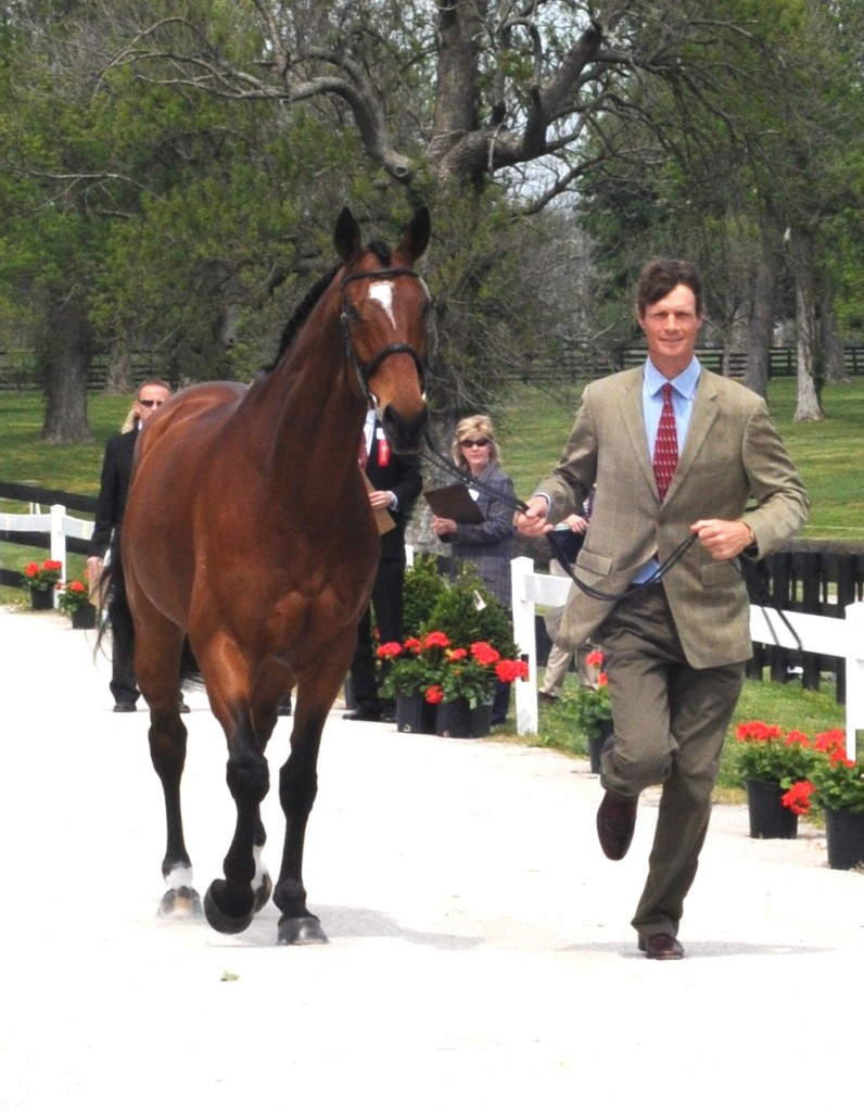 William Fox-Pitt and Parklane Hawk jog for the ground jury during the first vet inspection at the 2012 Rolex Three-Day Event. Photo by Lauren R. Giannini
