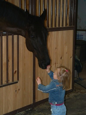 "Avery, with a horse named Paris, at the tender age of two. Although Avery started going to the barn when she was six weeks old, this is when ""it began!"" Horses were part of her soul.  Photo by Rochelle Costanza"