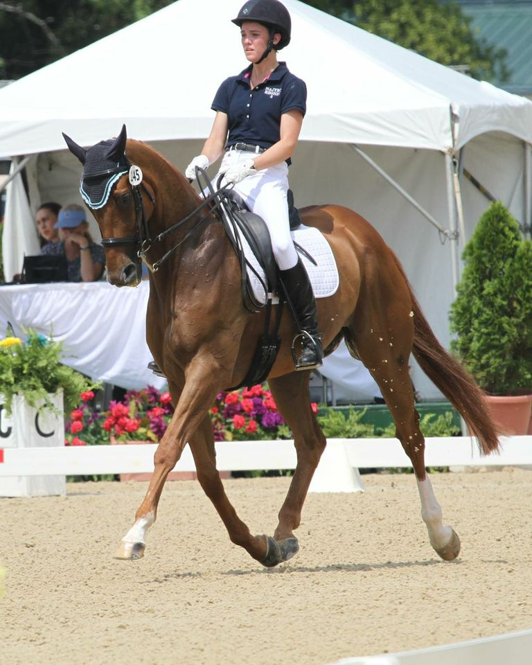 Jamie helped bring home the team bronze in dressage at the 2013 NAJYC.