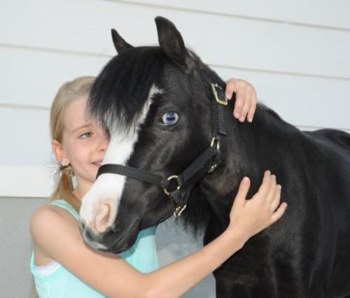 Hugging Magic gives a young girl comfort.