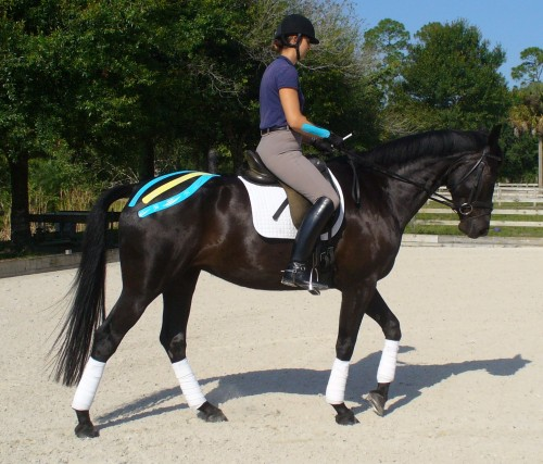 Equi-taping in action