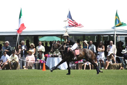 Polo at the Mashomack Polo Club in Pine Plains, New York.
