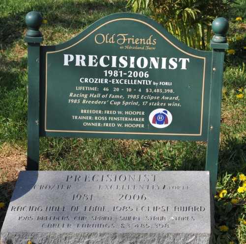 Precisionist – a favorite at Old Friends, gone but not forgotten. Photo by Lauren R Giannini