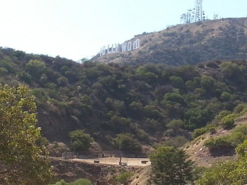 There's a horse arena underneath the Hollywood sign?! Who knew?